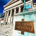 The Field Museum Sign In Chicago by Paul Velgos