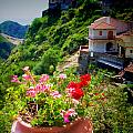 The Godfather Villages Of Sicily by David Smith