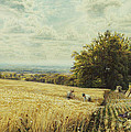 The Harvesters by Edmund George Warren