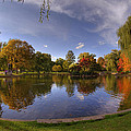 The Lagoon - Boston Public Garden Print by Joann Vitali