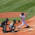 The Laser Show Dustin Pedroia by Tom Prendergast