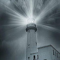 The Light House by Svetlana Sewell
