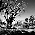 The Long Way Around  by Glenn McCarthy Art and Photography