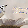 The Meaning Of Life by Lori Deiter