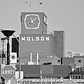 The Molson Clock Montreal by Reb Frost