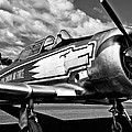 The North American T-6 Texan by David Patterson