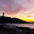 The Nubble Print by Steven Ralser