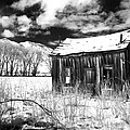 The Old Homestead by Cat Connor