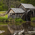 The Old Mill After The Rain by Amber Kresge