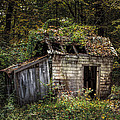 The Old Shack In The Woods - Autumn At Long Pond Ironworks State Park by Gary Heller