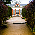The Path to the Orangery