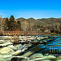 The Payette River by Robert Bales