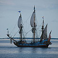 The Pirate Ship Print by Cecelia Helwig
