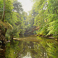The Quiet River by Peder Monsted