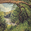The River Severn At Buildwas by Amanda Elwell