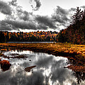 The South End Of Cary Lake by David Patterson
