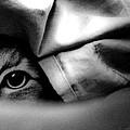 The Spy by Sabine Stetson