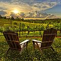 The Vineyard   by Debra and Dave Vanderlaan