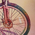 The Wheel In Color by Jenny Armitage
