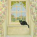 The Window Cat by Ditz