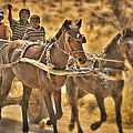 This Is Namibia No. 23 - Going To Town The Old Fashioned Way by Paul W Sharpe Aka Wizard of Wonders
