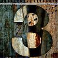 Three Along The Way by Carol Leigh
