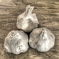 Three Bulbs of Garli...