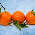 Three Tangerines by Alexander Senin