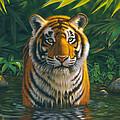 Tiger Pool by MGL Studio - Chris Hiett