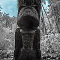 Tiki Man In Infrared by Jason Chu