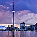 Toronto Skyline by Elena Elisseeva