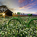 Tour De France by Debra and Dave Vanderlaan