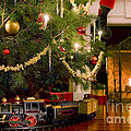 Toy Train Under The Christmas Tree by Diane Diederich
