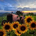Tractor Heaven by Debra and Dave Vanderlaan