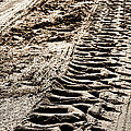 Tractor Tracks In Dry Mud by Olivier Le Queinec