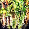 Trees by Daniel Janda