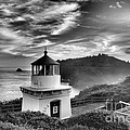 Trinidad Light In Black And White Print by Adam Jewell