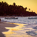 Tropical Beach At Sunset by Elena Elisseeva