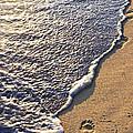 Tropical Beach With Footprints by Elena Elisseeva