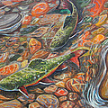 Trout Stream by Jenn Cunningham