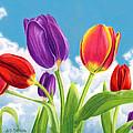 Tulip Garden by Sarah Batalka