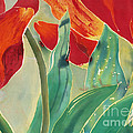 Tulips And Pushkinia Upper Detail by Anna Lisa Yoder