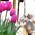 Tulips by Ece Erduran