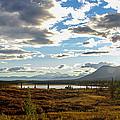 Tundra Burst by Chad Dutson