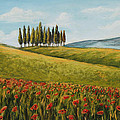 Tuscan Field With Poppies by Melinda Saminski