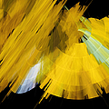 Tutu Stage Left Abstract Yellow by Andee Design