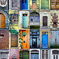 Twenty Four French Doors Collage by Georgia Fowler
