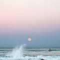 Twilight In Rose by Michelle Wiarda