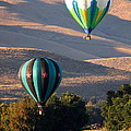 Two Balloons In Morning Sunshine by Carol Groenen