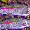Two Beauties - Trout by Laird Roberts